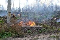 16 октября 2011 - Сжигают порубочные остатки леса в Тольятти