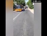 Уточки. Автобусы. Калининград