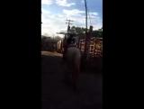 Пацан оседлал коня