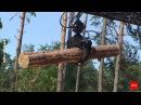 Незаконна вирубка лісу: як з нею боротися, знають у Дубенському лісгоспі