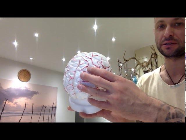 Бесплатный тренинг Здоровый мозг, тема Инсульт! (2 День) Алексей Маматов