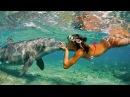 Relaxing Music. Самое красивое видео. Девушка и подводный мир океана. Музыка для релакс ...