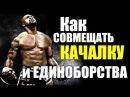 ЕДИНОБОРСТВА: Как Совмещать Бокс и Качалку . tlbyj,jhcndf: rfr cjdvtofnm ,jrc b rfxfkre .
