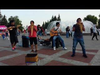 Pakari +2 - Movimiento indigena