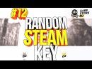 Random Steam Key 12 - Проверяем gabestore и раздаем Steam ключи.