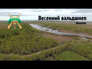 Национальная Лига Охоты.Вальдшнеп.(тизер)