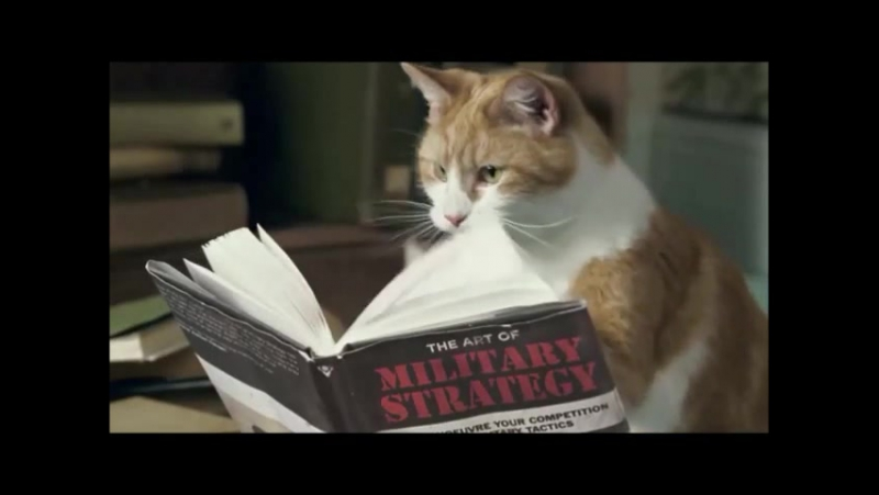 Cravendale Cats With Thumbs Adverts