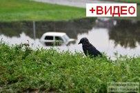 03 августа 2013. - Потоп в Тольятти после сильного дождя