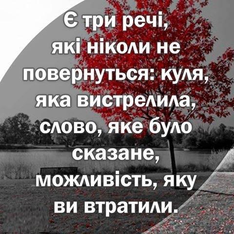 Зрадофилам рано радоваться. Проблему с прекращением розыска Интерполом Януковича, Клюева и Онищенко мы решим, - Луценко - Цензор.НЕТ 3673