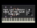 Pyotr Ilyich Tchaikovsky - Dance of the Sugar Plum Fairy - Piano Tutorial by Amadeus (Synthesia)
