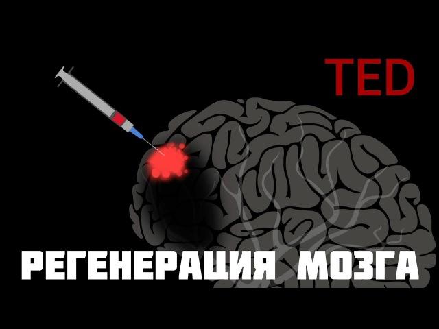 TED | Мозг может восстанавливать себя сам