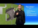 _01_Отзыв инвестора акционера группы компаний SkyWay