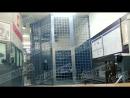 Джабраилов в клетке