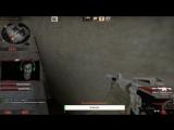 CSGO Hamster 1v5  (Stream)