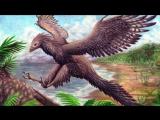 10 Самых Странных Доисторических Животных, Которые Когда-Либо Жили На Земле