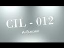 WCB3W: 1 CIL-012