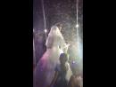 Акылбек Жамила белый танец