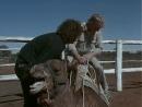 1991 Австралия - Люди в пустынном море