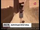 В Саудовской Аравии задержали модель в мини-юбке