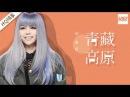 纯享版 张惠妹《青藏高原》《梦想的声音》第5期 20161202 浙江卫视官方HD