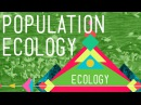 Population Ecology: The Texas Mosquito Mystery - Crash Course Ecology 2