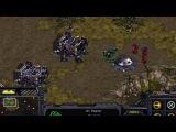 Firebat &amp Jim Raynor Dialogues Easter Egg - Starcraft 1