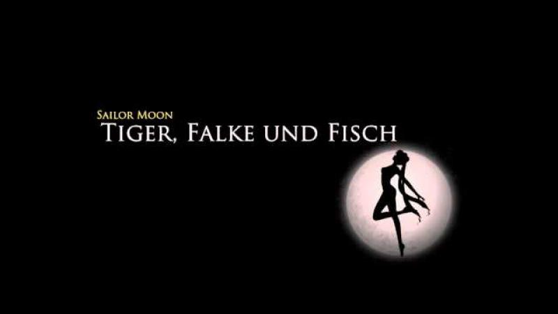 Sailor Moon Super S OST - Tiger, Falke und Fisch