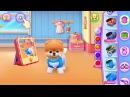 Play Boo 🙉 The World's Cutest Dog Kids games 🙊 Fun Pet care Dog Cute