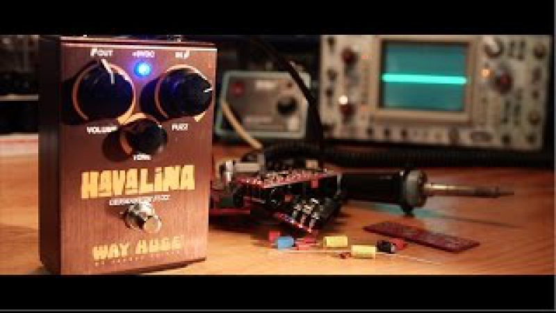 The Way Huge Havalina Germanium Fuzz: A Complete Overview (Humbuckers Single Coils)