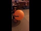 панда с мячиком