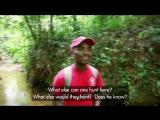 BBC Natural World 2012 - Madagascar, Lemurs and Spies (HDTV x264)