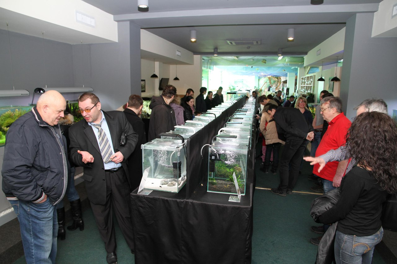 Третья Всеукраинская выставка аквариумных креветок и других ракообразных