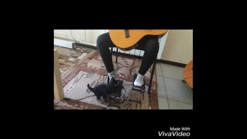 На уроке гитары Две Звезды Рита и Джесика