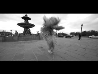 Paris is magic ! When Skorpion Dancer meets our director Red is dancing !