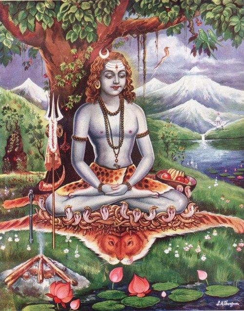 Шива, Йога, Дхарма, Юкти-Йога, Раджа-Йога, Раджа