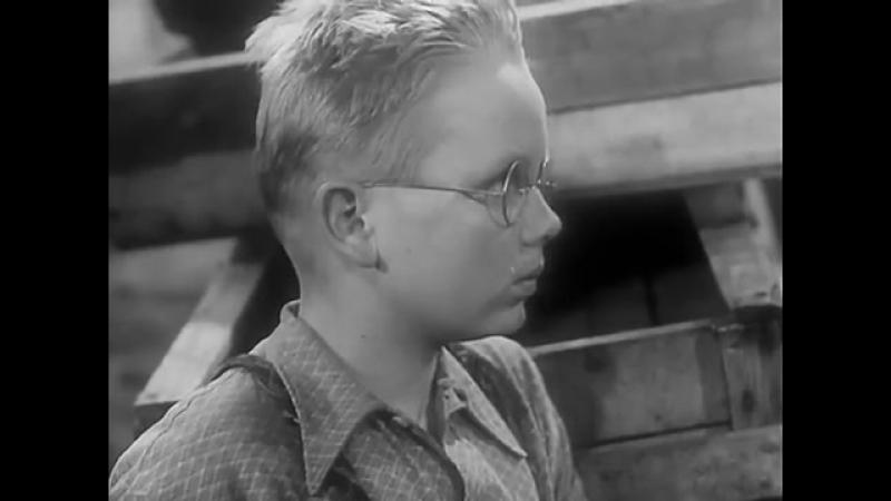 Тайна затонувшего корабля(ГДР, 1954, семейный, приключения) [360]