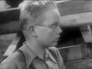 Тайна затонувшего корабля ГДР 1954 семейный приключения 360