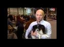 Константин Шадрин на ТВЦ - Какие животные подходят Вам