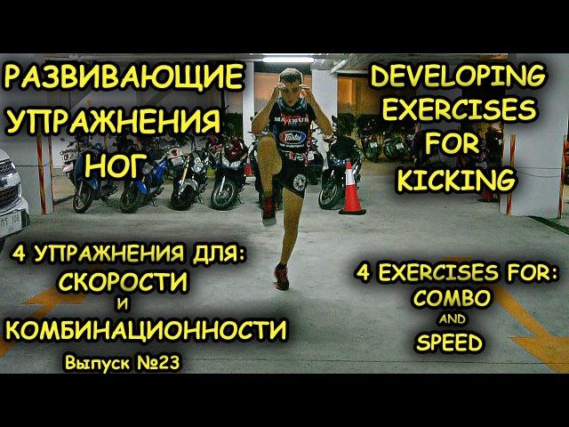 Тренировка ног. Развивающие упражнения для бойца. Как увеличить скорости и комбинационность. nhtybhjdrf yju. hfpdbdf.obt eghfyt