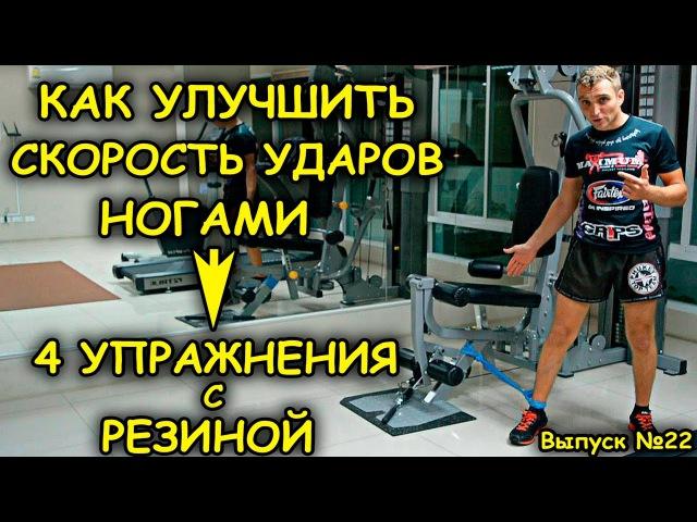Тренировка ног Как улучшить скорость удара Упражненя с резиной nhtybhjdrf yju rfr ekexibnm crjhjcnm elfhf eghf ytyz c htpbyj