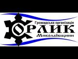 Орлик М Савченко   чому вона герой