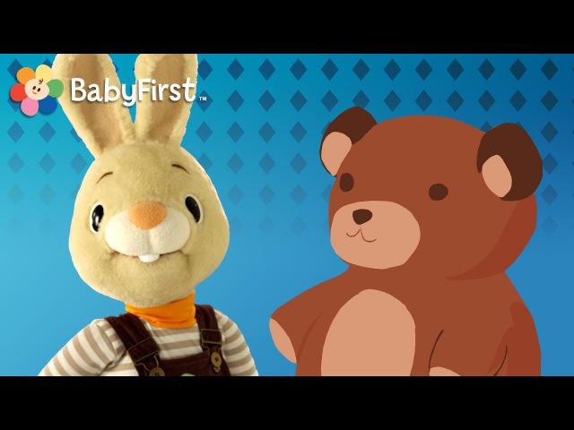 Harry Le lapin joue avec un ours en peluche | Apprentissage des objets pour enfants | BabyFirst