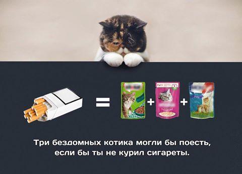 Фото №456264739 со страницы Екатерины Чепуркиной