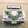 VipCar.by - прокат свадебных авто в Минске