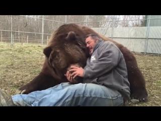 Трогательная любовь диких животных к человеку.