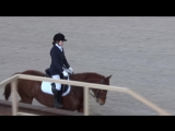 Шестова Мария на Белой Акации, лошади 4 лет