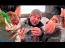 ТРУДОВАЯ рыбалка ЩУКА Окунь и Судак на силиконовые приманки Фанатик
