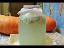 Чесночный квас 🍺 от алкогольной зависимости и наркотической ломки Garlic