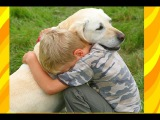 Dogs Crying When He Meets Owner After Long Time
