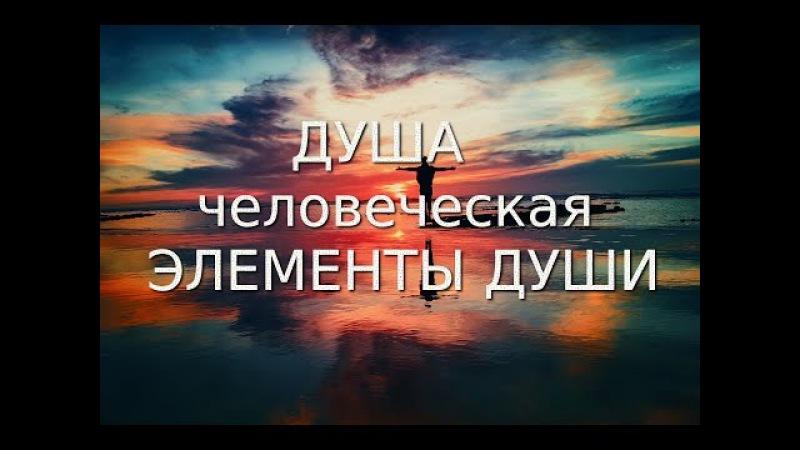 Душа человеческая. Что ты не знаешь о своей душе Н.Е. Пестов